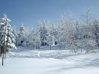 winter in mountains 6
