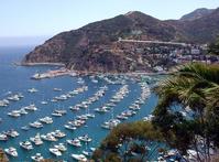 Catalina Island 2