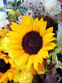 Harvest Thanks Giving 2