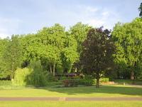 park in sunlight 2