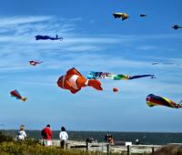 Kites Over Hilton Head Island