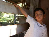 little boy live in the ranch 3
