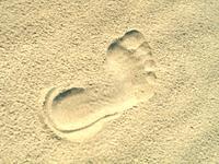 foot mark 1