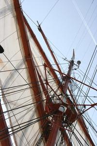 Sedov Sailing Ship 9