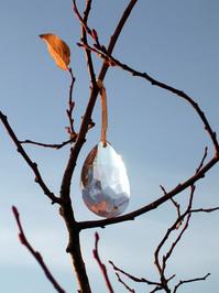 Crystal drop on tree 2