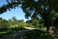 Walk around Petit Trianon