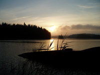 swedish sunrise 2