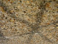 pebbly wall