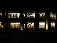 Night Campus