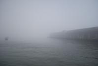 Fog in San Francisco