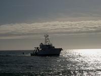 Ship in sunset