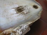 Stone Crystal