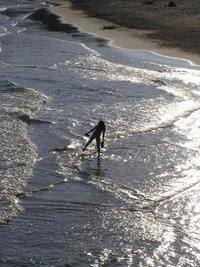 Seaback Girl