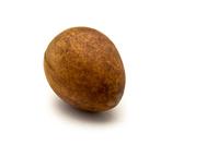 Avocado seed 1