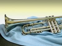 Trumpet Still Life