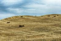Straw Bales on Hills