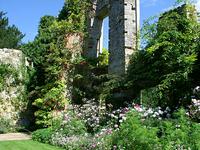 scotney castle ruin