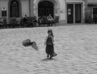 Pigeon-chasing