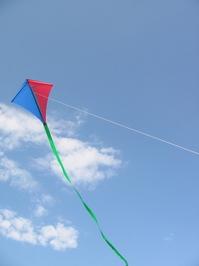 """Single Line Kite """"Skylark"""" 1"""