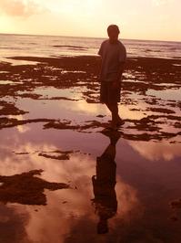 Reef Walking