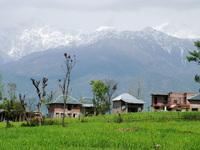 Himalya 13