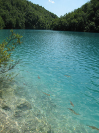 National park Plitvice 7