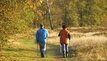 November Walking
