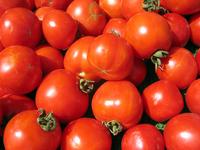Farmers Market - Tomatoes