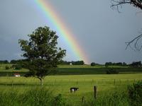Rainbow Three