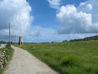 Barbados - old sugar mill