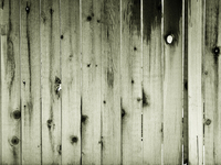 Sepia Fence