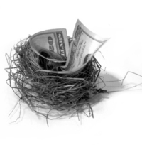 Nest Egg II