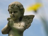 Hayleys Little Angel