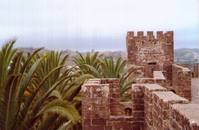 Castle tower