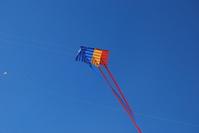 Tricolor kites 2