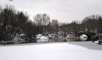Central Park snowy pond