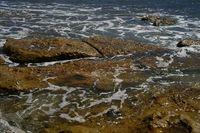 rocks at Balmoral Beach, Sydne