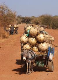 African Transportation