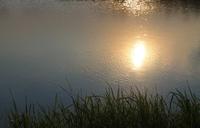 Sun Reflection On Water