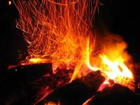 Firebrands