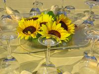Weddings in Tuscany 1