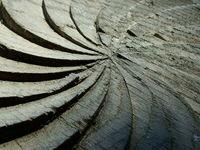 szekler (szekely) woodgate det