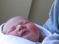 Newborn Elisa