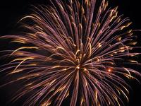 Fireworks Series 2005 #1 1