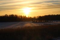 Wintery Sunrise 2