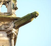Gargoyle in Notre Dame