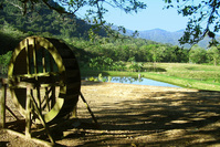 old farm 10