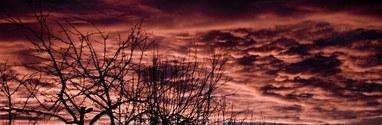 Sky Timashevsk morning 2