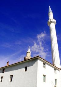 Mosque photo 1