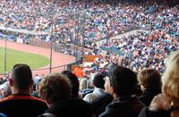Baseball Park Fans